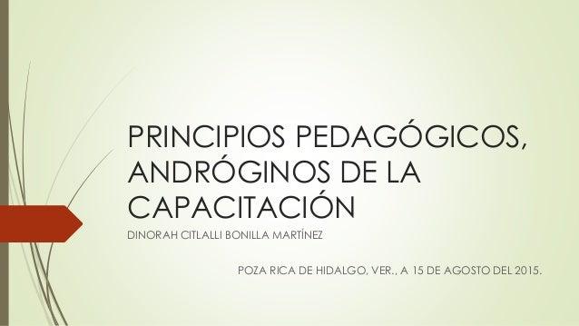 PRINCIPIOS PEDAGÓGICOS, ANDRÓGINOS DE LA CAPACITACIÓN DINORAH CITLALLI BONILLA MARTÍNEZ POZA RICA DE HIDALGO, VER., A 15 D...