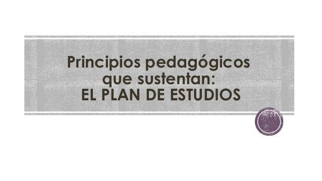 Principios pedagógicos  que sustentan:  EL PLAN DE ESTUDIOS