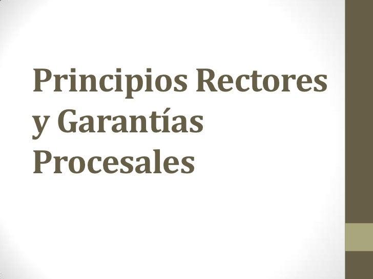 Principios Rectoresy GarantíasProcesales