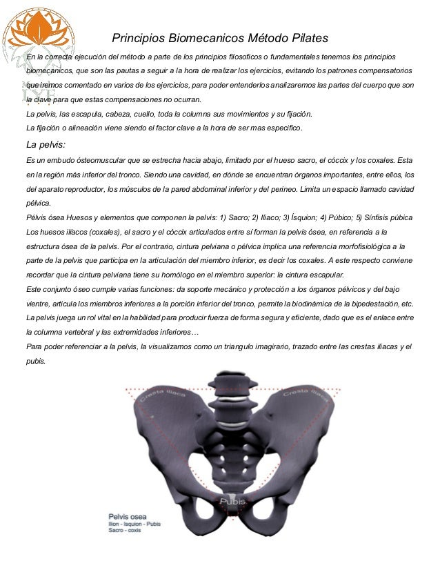 Principios Biomecanicos Método Pilates En la correcta ejecución del método a parte de los principios filosoficos o fundame...