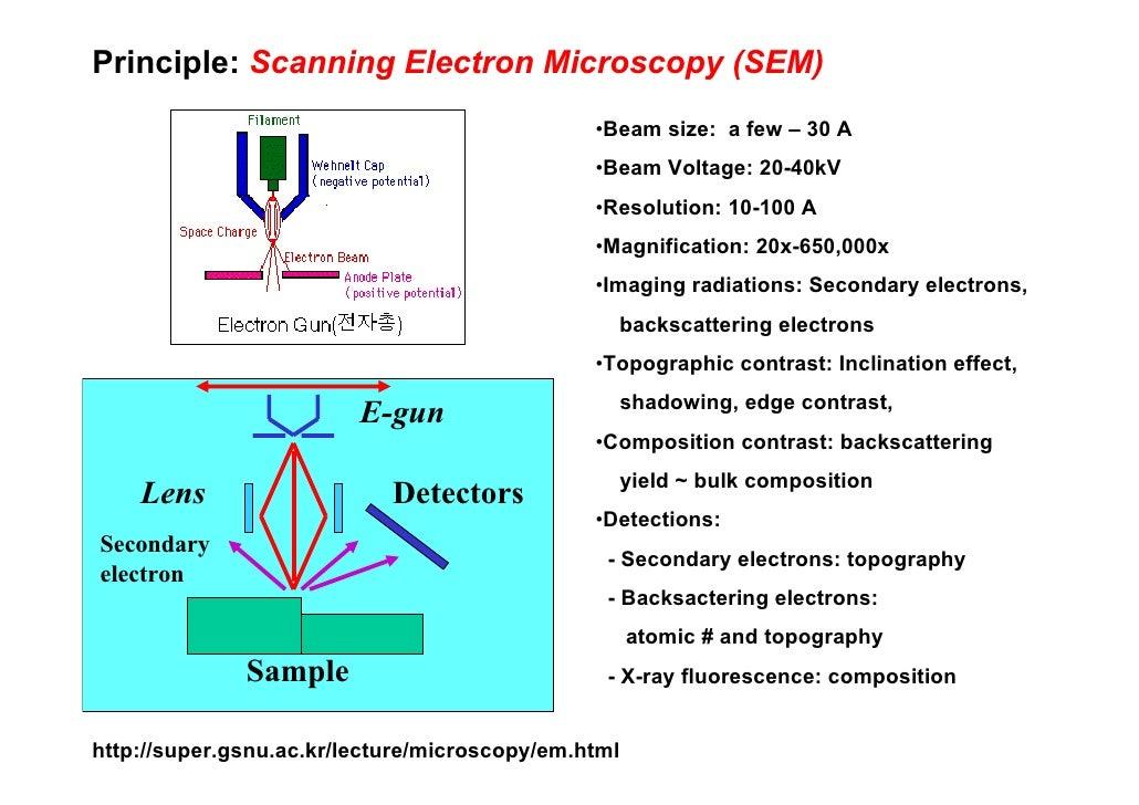 tem microscope
