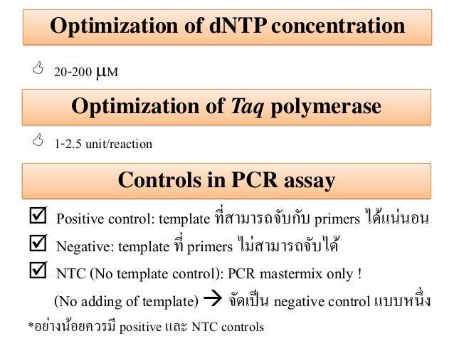 Principle of pcr reaction 24 pronofoot35fo Choice Image