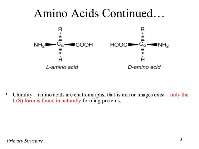protein structure and function There are about 20 different amino acids, each with a different chemical structure and characteristics for instance, some are polar, others are nonpolar the final protein structure is dependent upon the amino acids that compose it protein function is directly related to the structure of that protein a protein's specific shape.