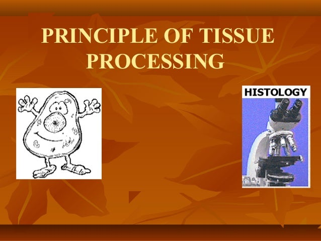 PRINCIPLE OF TISSUE PROCESSING