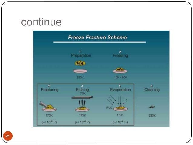 principle of transmission electron microscopy pdf