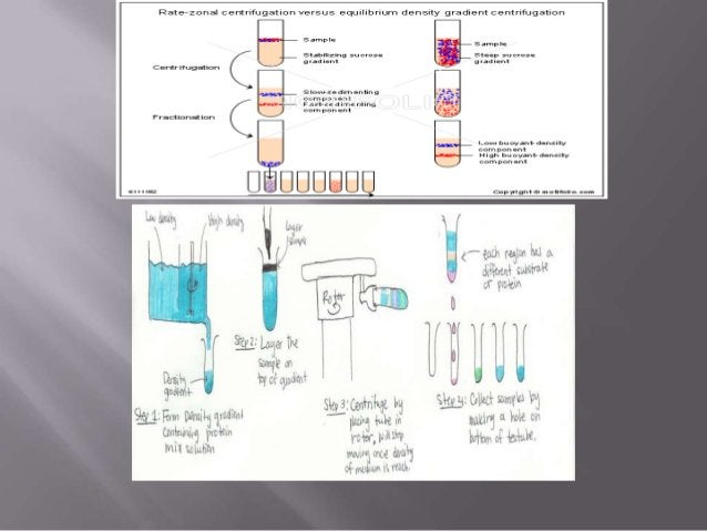 Principles and applications of centrifugation ppt