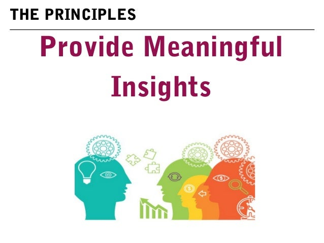Provide Meaningful Insights THE PRINCIPLES