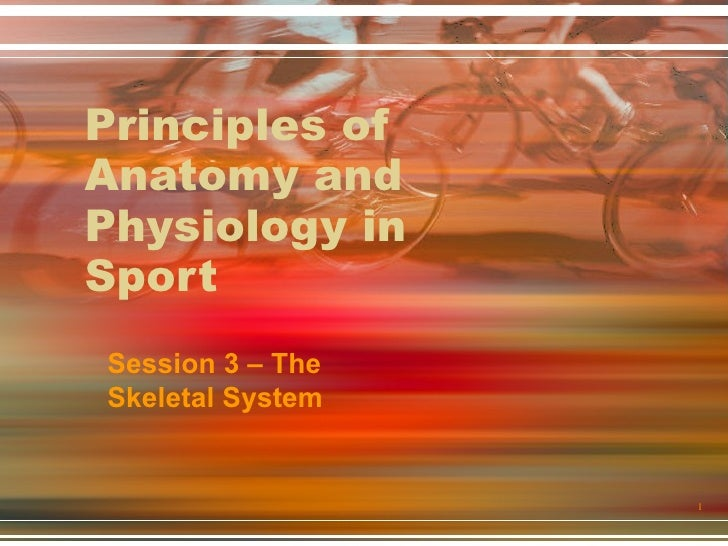 Principles of Anatomy and Physiology in Sport Session 3 – The Skeletal System