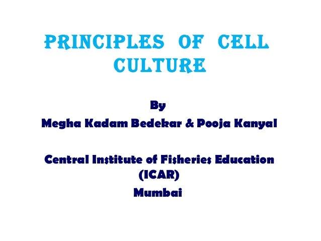 PrinciPles of cell culture By Megha Kadam Bedekar & Pooja Kanyal Central Institute of Fisheries Education (ICAR) Mumbai