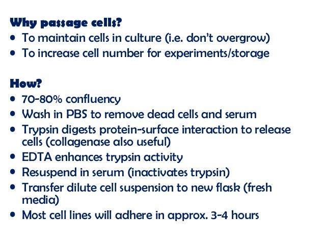 how to prepare pbs for cell culture