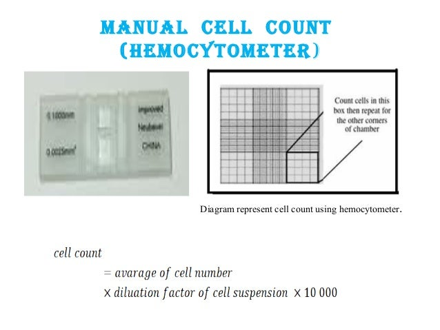 cell counting by hemocytometer pdf