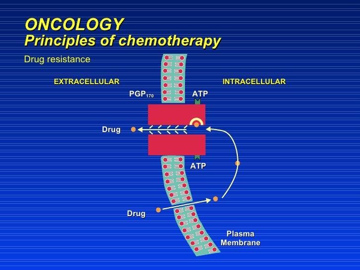 cyclophosphamide mechanism of action