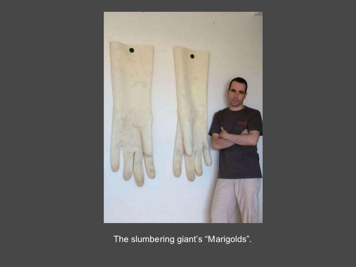 """The slumbering giant's """"Marigolds""""."""