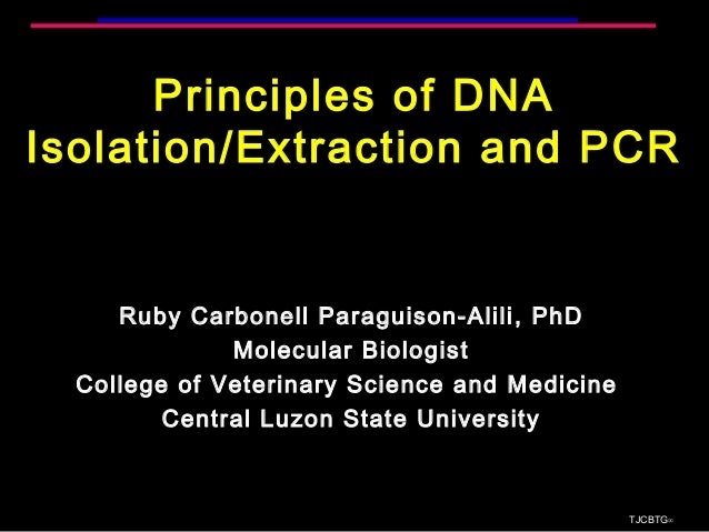 Principles of DNA Isolation/Extraction and PCR Ruby Carbonell Paraguison-Alili, PhD Molecular Biologist College of Veterin...