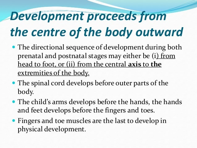 principles of human growth and development, Muscles