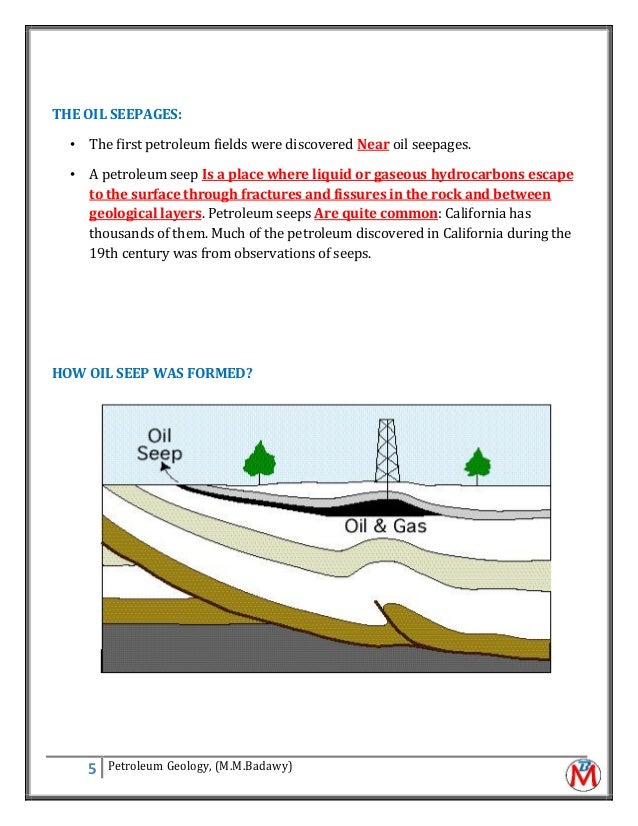 Principles of petroleum geology m.m.badawy