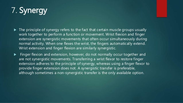 7. Synergy  The principle of synergy refers to the fact that certain muscle groups usually work together to perform a fun...