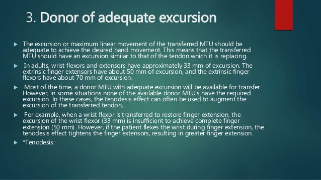 3. Donor of adequate excursion  The excursion or maximum linear movement of the transferred MTU should be adequate to ach...