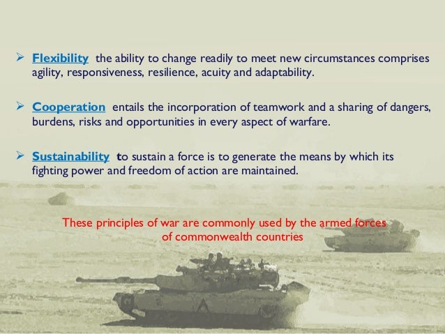 10 principles of war pdf