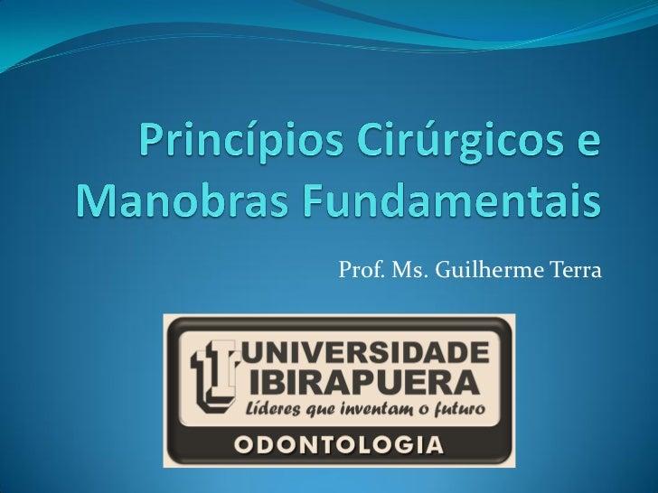 Prof. Ms. Guilherme Terra