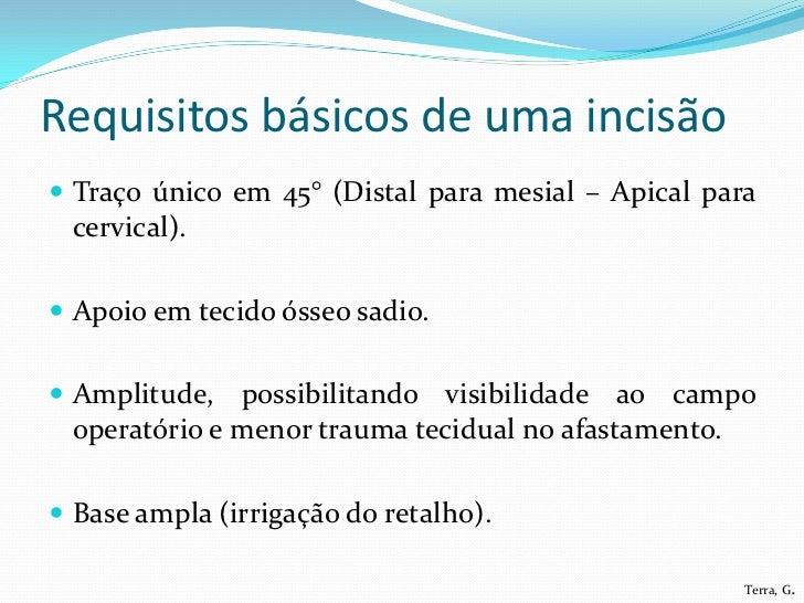 Requisitos básicos de uma incisão Traço único em 45° (Distal para mesial – Apical para cervical). Apoio em tecido ósseo ...