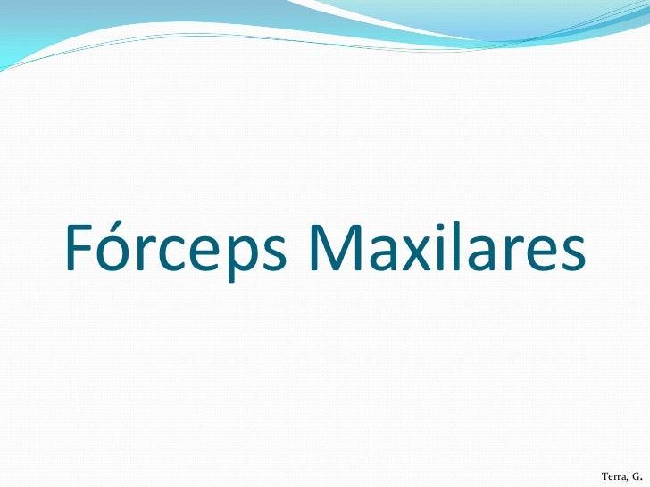 Fórceps Maxilares                    Terra, G.