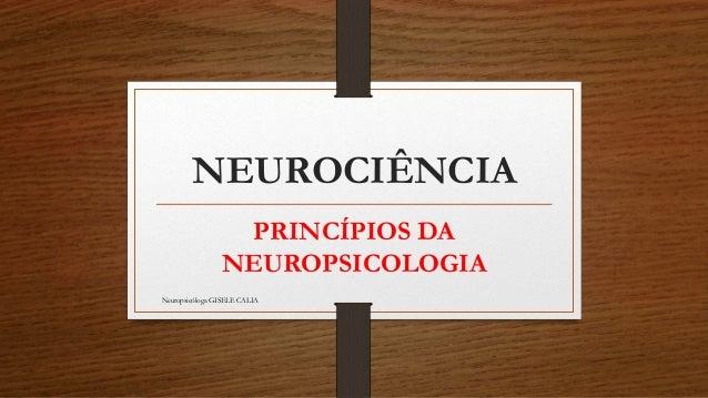 NEUROCIÊNCIA PRINCÍPIOS DA NEUROPSICOLOGIA Neuropsicóloga GISELE CALIA