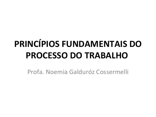 PRINCÍPIOS FUNDAMENTAIS DO  PROCESSO DO TRABALHO  Profa. Noemia Galduróz Cossermelli