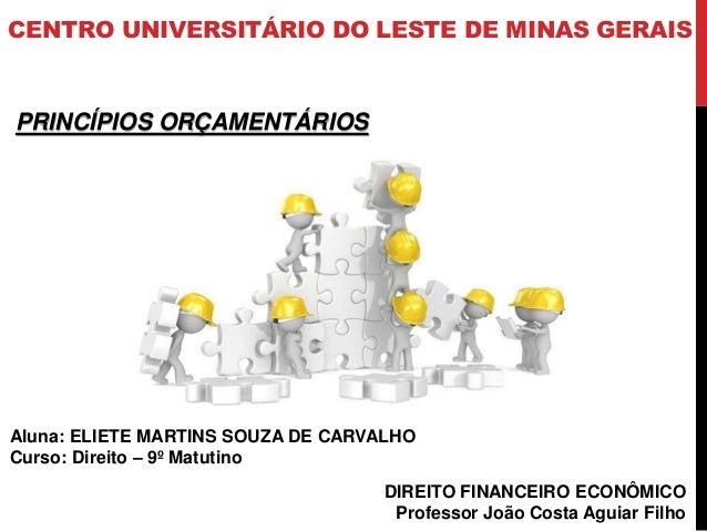 CENTRO UNIVERSITÁRIO DO LESTE DE MINAS GERAIS DIREITO FINANCEIRO ECONÔMICO Professor João Costa Aguiar Filho PRINCÍPIOS OR...