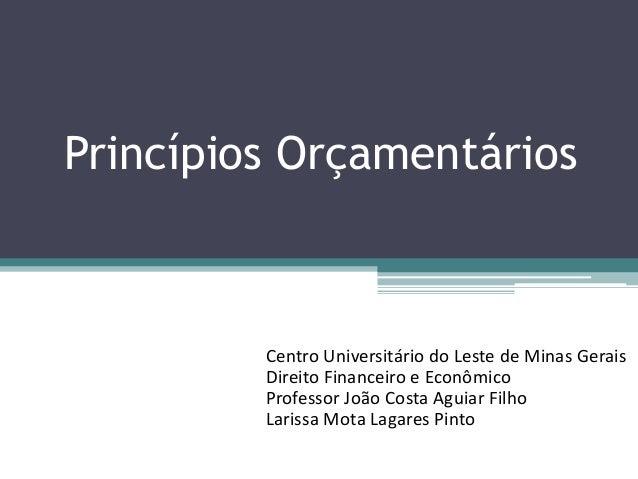 Princípios Orçamentários Centro Universitário do Leste de Minas Gerais Direito Financeiro e Econômico Professor João Costa...