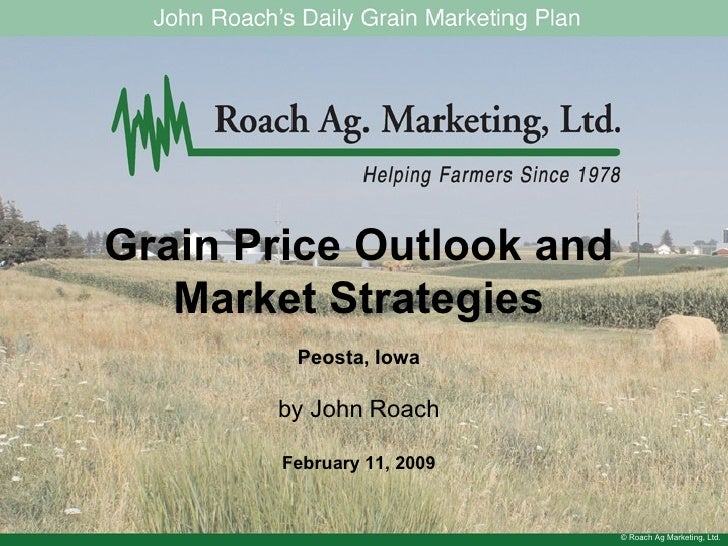 © Roach Ag Marketing, Ltd. Grain Price Outlook and Market Strategies Peosta, Iowa by John Roach February 11, 2009