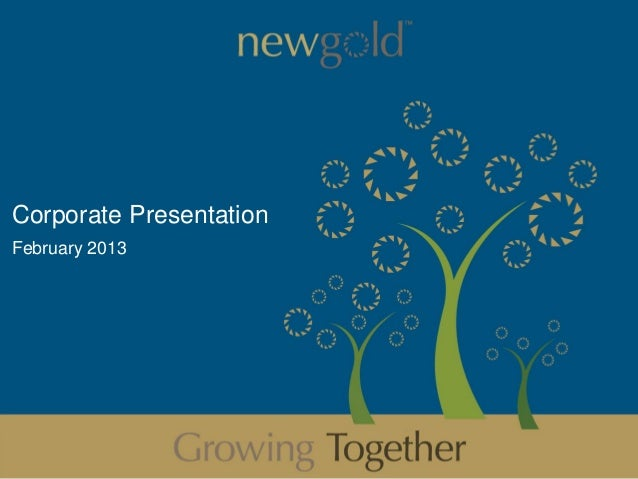 Corporate PresentationFebruary 2013