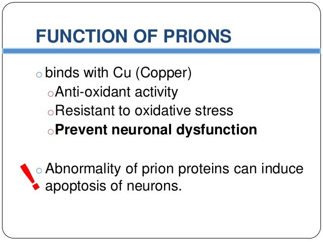 prions proteins as genes and infectious Abstractthe resemblance between the discoveries that dna is the basis of heredity and that prions are infectious proteins is remarkable though four decades separated these two discoveries.