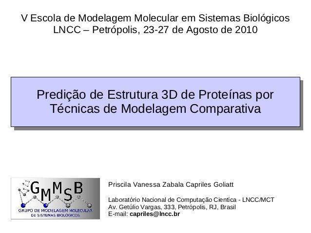 V Escola de Modelagem Molecular em Sistemas Biológicos      LNCC – Petrópolis, 23-27 de Agosto de 2010   Predição de Estru...