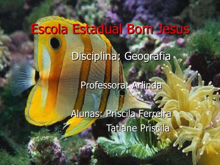 Escola Estadual Bom Jesus Disciplina: Geografia Professora: Arlinda Alunas: Priscila Ferreira Tatiane Priscila