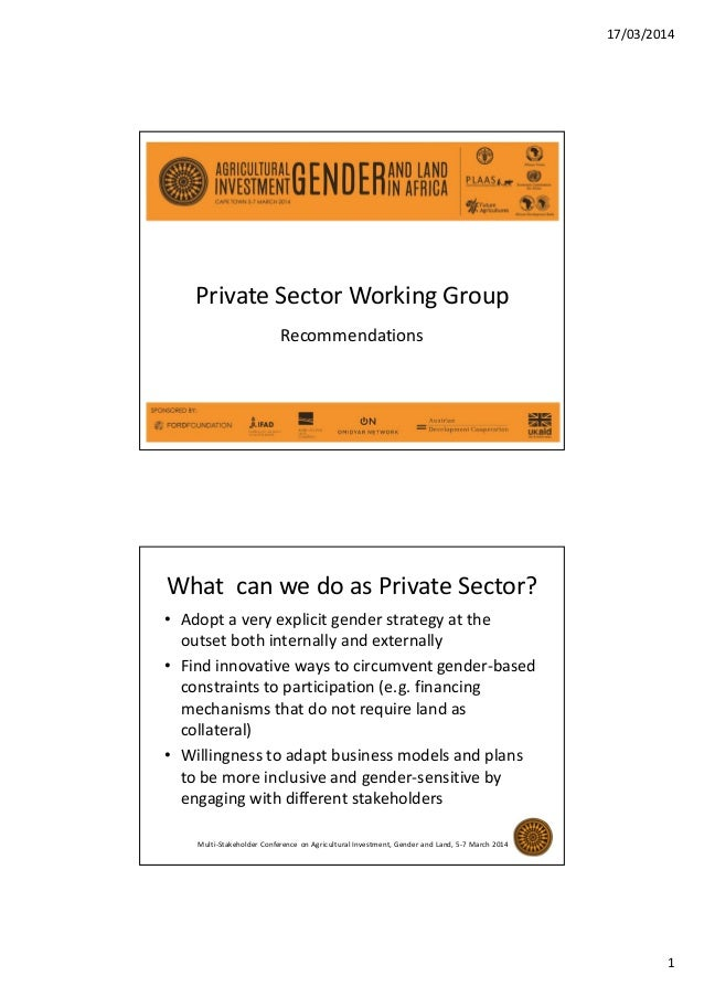 17/03/2014 1 Private Sector Working Group Recommendations What can we do as Private Sector? • Adopt a very explicit gender...