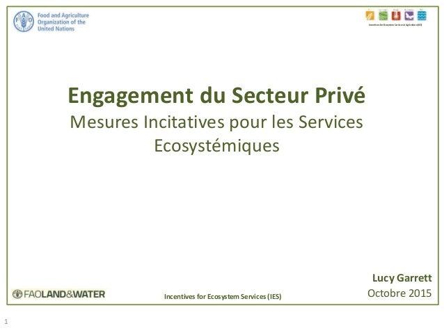 1 Engagement du Secteur Privé Mesures Incitatives pour les Services Ecosystémiques Incentives for Ecosystem Services in Ag...