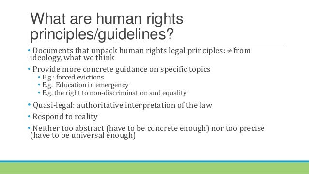 Defining human rights Guiding Principles on States' obligations regarding private actors in education Slide 2