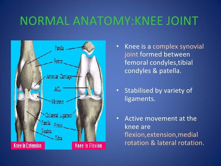 Osteoarthritis knee priyank paindeformity depression 4 normal anatomyknee ccuart Image collections