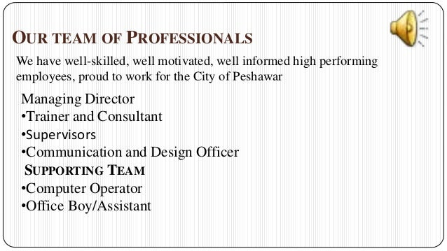 hr consultancy business plan .ppt