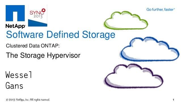 Wessel Gans Software Defined Storage Clustered Data ONTAP: The Storage Hypervisor 1