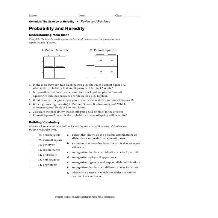 Heredity Worksheet #2 Worksheet for 9th - Higher Ed | Lesson Planet