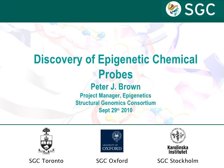 Discovery of Epigenetic Chemical Probes Peter J. Brown Project Manager, Epigenetics Structural Genomics Consortium Sept 29...