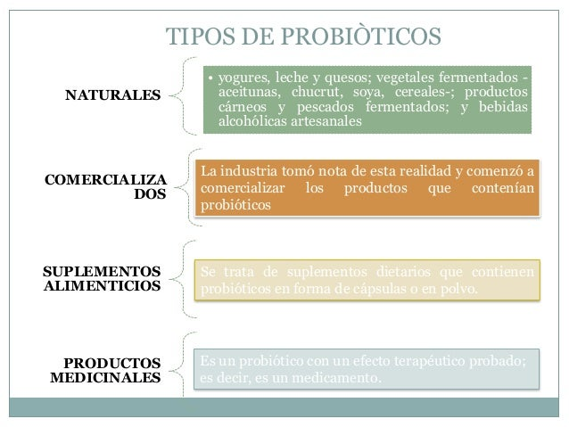 Probioticos 1 - Alimentos con probioticos y prebioticos ...