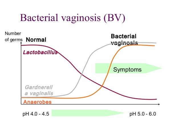 Bacterial vaginosis uk