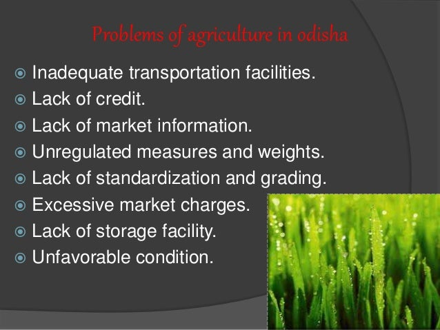 challenges and opportunities in agricultural marketing Problems encountered by agricultural marketing firms in food and agricultural product exporting: anal ysis of survey results-kimberley c hollon.