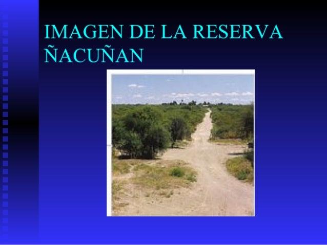IMAGEN DE LA RESERVA ÑACUÑAN
