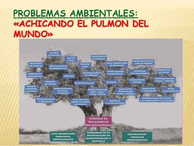 PROBLEMAS AMBIENTALES: «ACHICANDO EL PULMON DEL MUNDO»