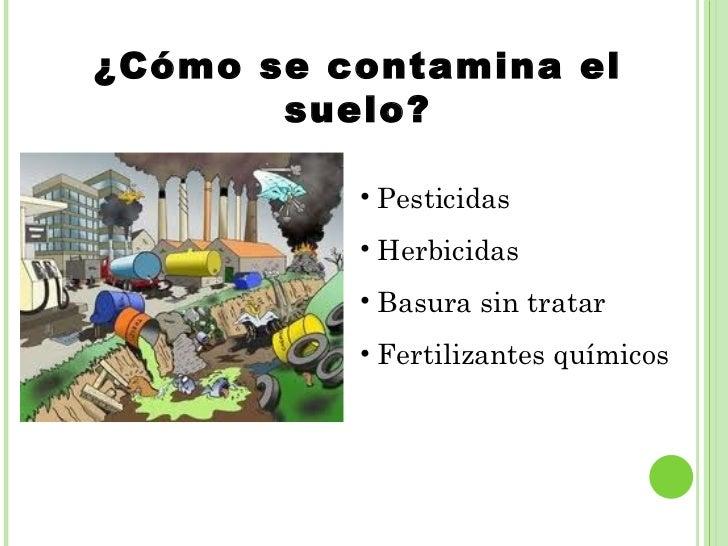 Problemas ambientales por andrea lal a for Como se creo el suelo