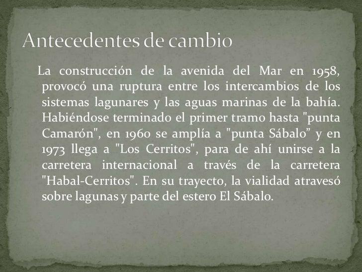 La construcción de la avenida del Mar en 1958, provocó una ruptura entre los intercambios de los sistemas lagunares y la...